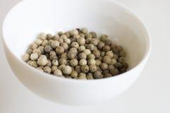 Witte peper royalty-vrije stock afbeelding