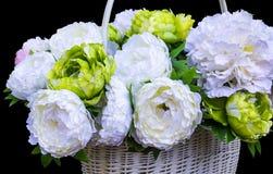 Witte pioenen Royalty-vrije Stock Fotografie