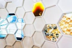 Witte plastic honingraat op de tentoonstelling Stock Foto's