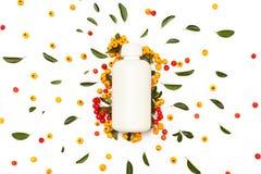Witte plastic kosmetische fles met groene verse bladeren Stock Afbeeldingen