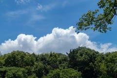 Witte, pluizige wolken in blauwe hemel Royalty-vrije Stock Fotografie