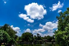 Witte, pluizige wolken in blauwe hemel Stock Foto's