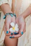 Witte plumeriabloem op hand met een turkooise armband stock fotografie