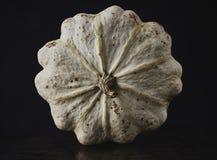 Witte Pompoen voor Recepies Stock Foto's
