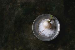 Witte radijs met zout Royalty-vrije Stock Afbeeldingen