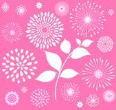 Witte Retro Bloemenclipart op Roze Achtergrond Royalty-vrije Stock Afbeeldingen