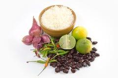 Witte rijst Royalty-vrije Stock Foto's