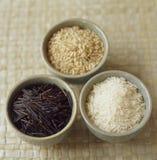 Witte rijst en wilde rijst Stock Afbeelding