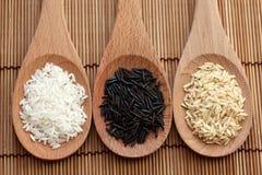 Witte rijst en wilde rijst en ongepelde rijst in houten lepels Royalty-vrije Stock Fotografie