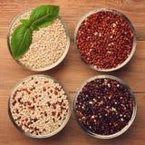 Witte, rode, zwarte en gemengde ruwe quinoa korrel Royalty-vrije Stock Afbeeldingen