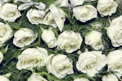 Witte Rose Boutonniere Stock Foto's