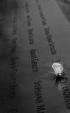 Witte Rose Memorial Stock Fotografie