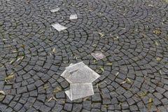 Witte Rose Memorial Leaflets bij Universiteit in München, Duitsland, Royalty-vrije Stock Foto