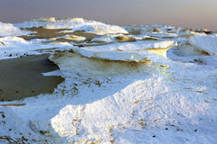 Witte rots in Zonsondergang royalty-vrije stock afbeelding