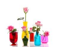 Witte roze rozen royalty-vrije stock foto's