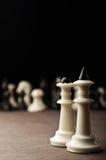 Witte schaakkoningen en koningin Stock Afbeelding