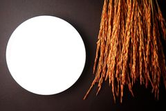 Witte schotel met oor van rijst op bruine leerachtergrond Royalty-vrije Stock Afbeeldingen