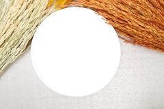 Witte schotel met oor van rijst op katoenen achtergrond Stock Afbeeldingen