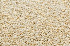 Witte sesamzadenachtergrond Nuttige zaden voor het koken stock fotografie