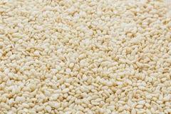 Witte sesamzadenachtergrond Nuttige zaden voor het koken royalty-vrije stock foto's