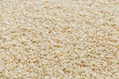 Witte sesamzadenachtergrond Nuttige zaden voor het koken royalty-vrije stock foto