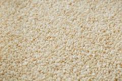 Witte sesamzadenachtergrond Nuttige zaden voor het koken stock afbeelding