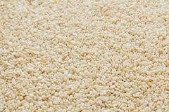 Witte sesamzadenachtergrond Nuttige zaden voor het koken royalty-vrije stock fotografie