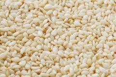 Witte sesamzadenachtergrond Nuttige zaden voor het koken stock foto
