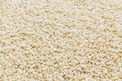 Witte sesamzadenachtergrond Nuttige zaden voor het koken royalty-vrije stock afbeelding