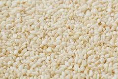 Witte sesamzadenachtergrond Nuttige zaden voor het koken royalty-vrije stock afbeeldingen
