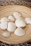 Witte shells in houten kom Royalty-vrije Stock Fotografie