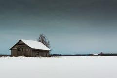 Witte Sneeuw onder de Donkere Hemel Royalty-vrije Stock Foto