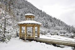 Witte sneeuwcabine in pijnboombos Royalty-vrije Stock Foto
