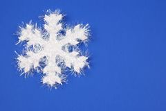 Witte Sneeuwvlok royalty-vrije stock foto