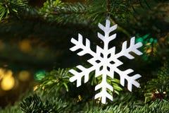 Witte sneeuwvlok in een verse groene Kerstboom Stock Afbeeldingen