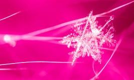 Witte sneeuwvlok op een roze achtergrond Royalty-vrije Stock Foto