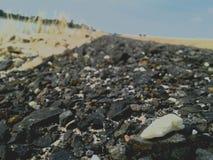 Witte steen op de weg Stock Afbeeldingen