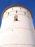 Witte steentoren Stock Foto's