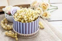 Witte Stroom Royalty-vrije Stock Foto