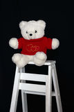 Witte Teddybeer op Ladder Stock Foto's