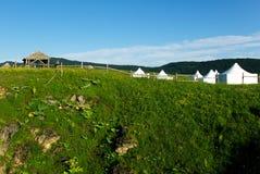 Witte tent op het groene gras Stock Afbeeldingen