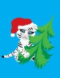 Witte tijger in de hoed van Kerstmis Stock Foto's