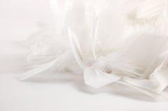 Witte veerachtergrond Royalty-vrije Stock Foto
