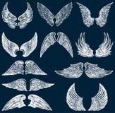 Witte vleugels Royalty-vrije Stock Afbeeldingen