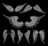 Witte vleugels op zwarte achtergrond vector illustratie