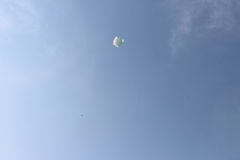 Witte vlieger Royalty-vrije Stock Afbeeldingen