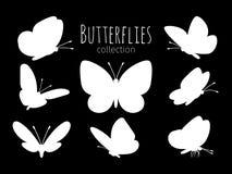 Witte vlindersilhouetten Royalty-vrije Stock Fotografie