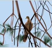 Witte Vogel royalty-vrije illustratie