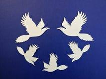 Witte vogels Document knipsel Stock Fotografie