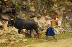 Witte vrouw Hmong die van de gebieden terugkeert stock fotografie